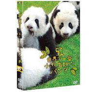 51 世界で一番小さく生ま れたパンダ