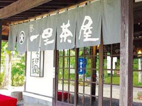 季節ごとの魅力とおいしいそば 「那須高原」の旅