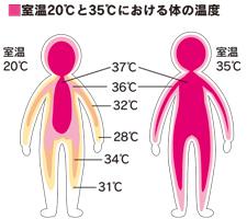 室温20℃と35℃における体の温度
