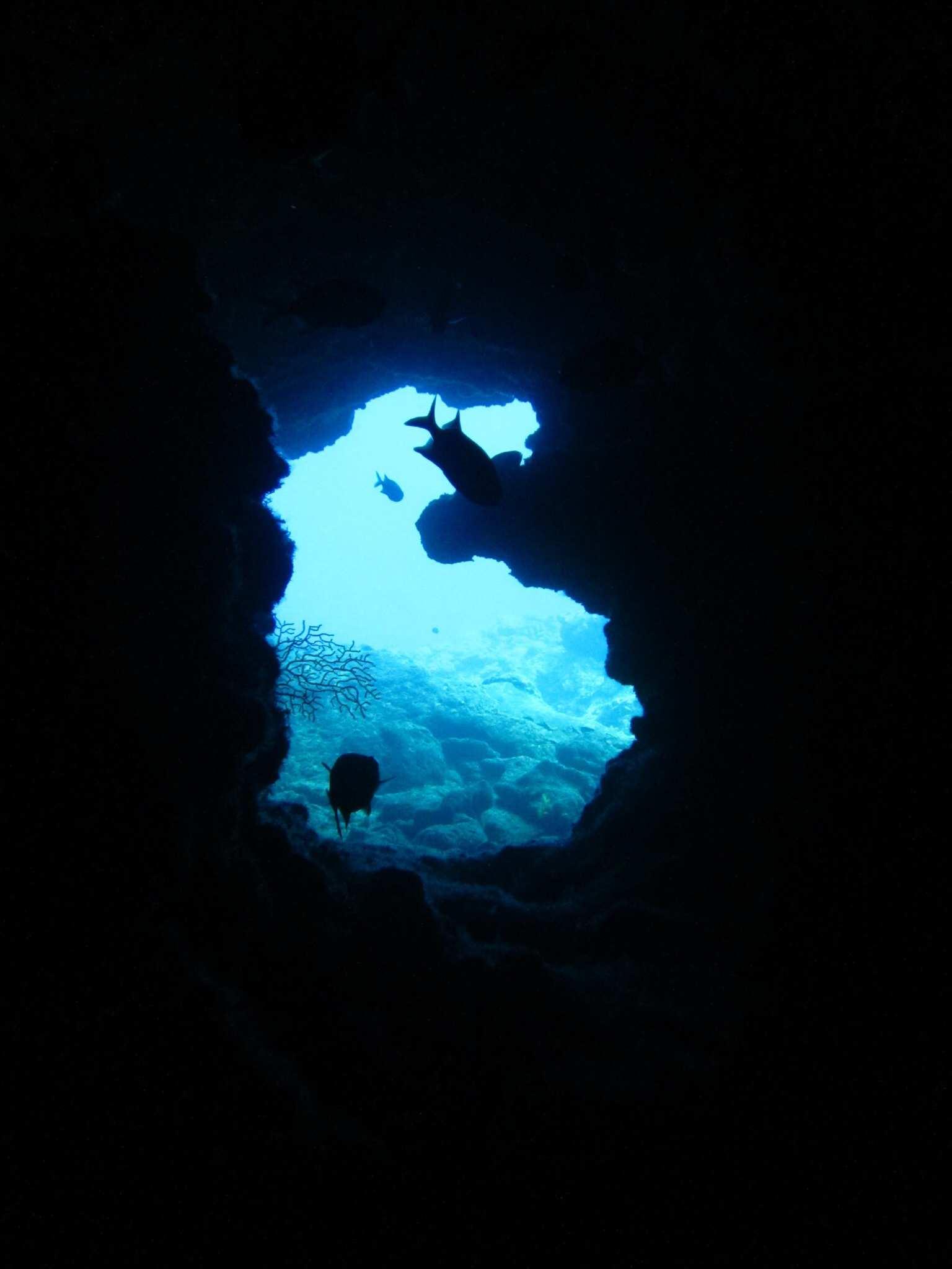 夏の終わりは沖縄旅行♪海中展望台でイメトレ!