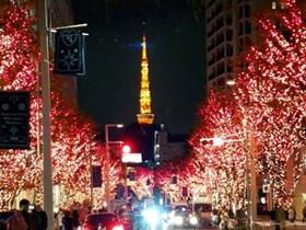 注目スポットから穴場まで! 都内近郊のクリスマスイルミネーション2014