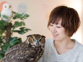 フクロウに会える店 ふわふわ オーナー・柾木美紀さん(37歳)