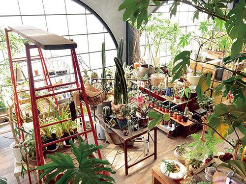 緑のインテリアで癒しをプラス~地下鉄沿線のGreenshop&Flowershop