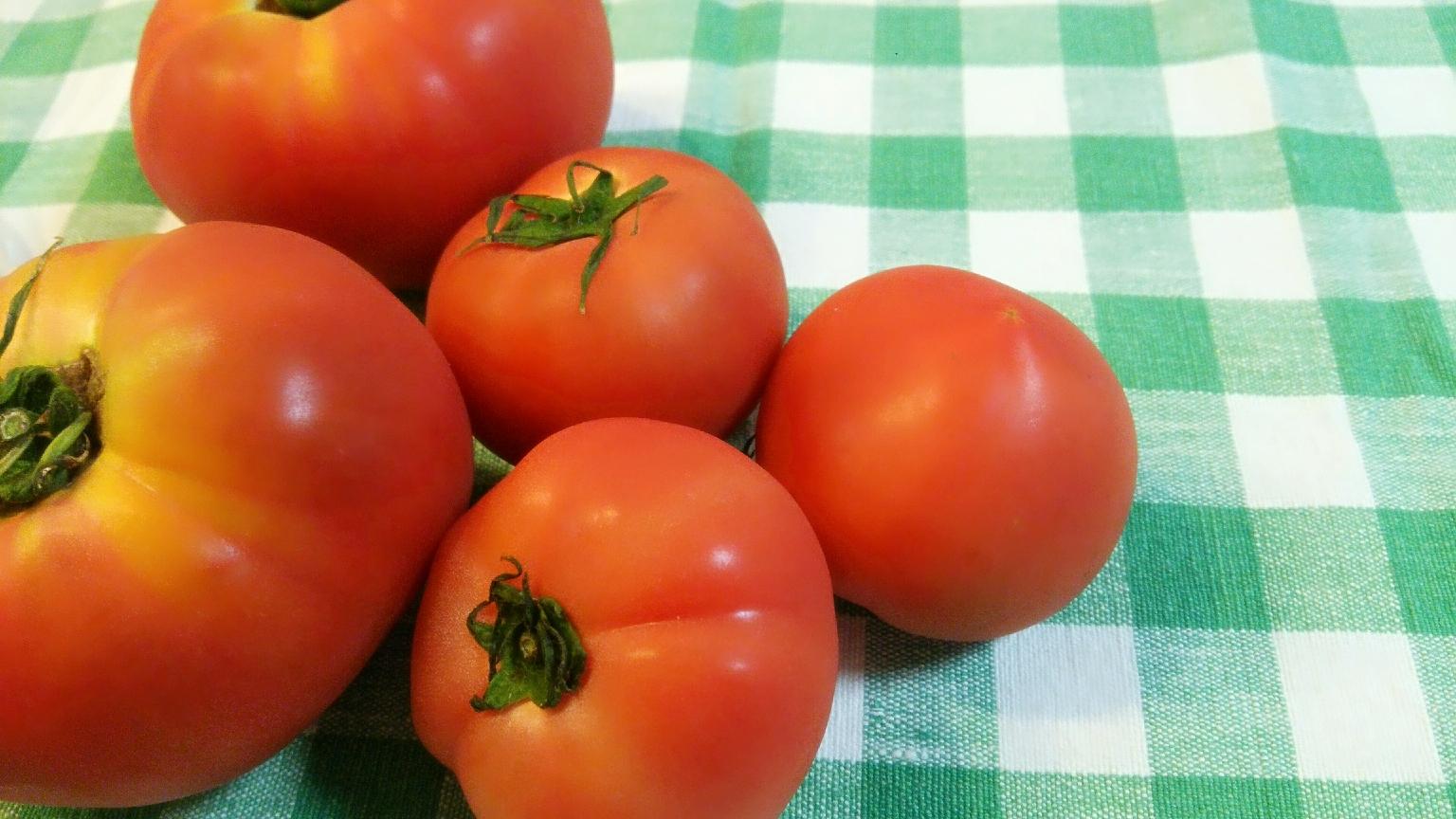 【紫外線対策】食べる日焼け止め?!トマト