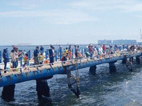 初心者も気軽に楽しめる 本牧海釣り施設