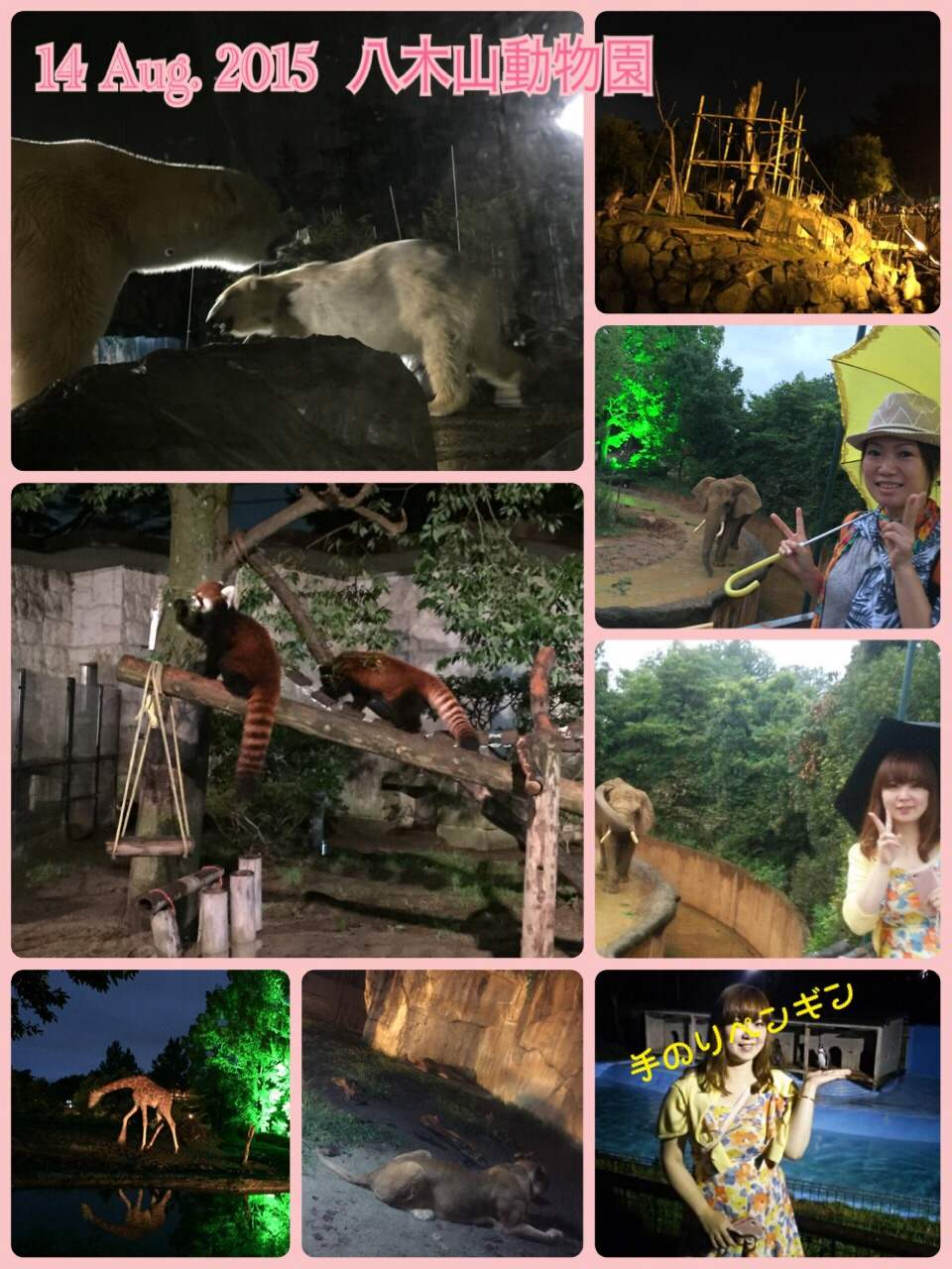 ☆夜の動物園☆
