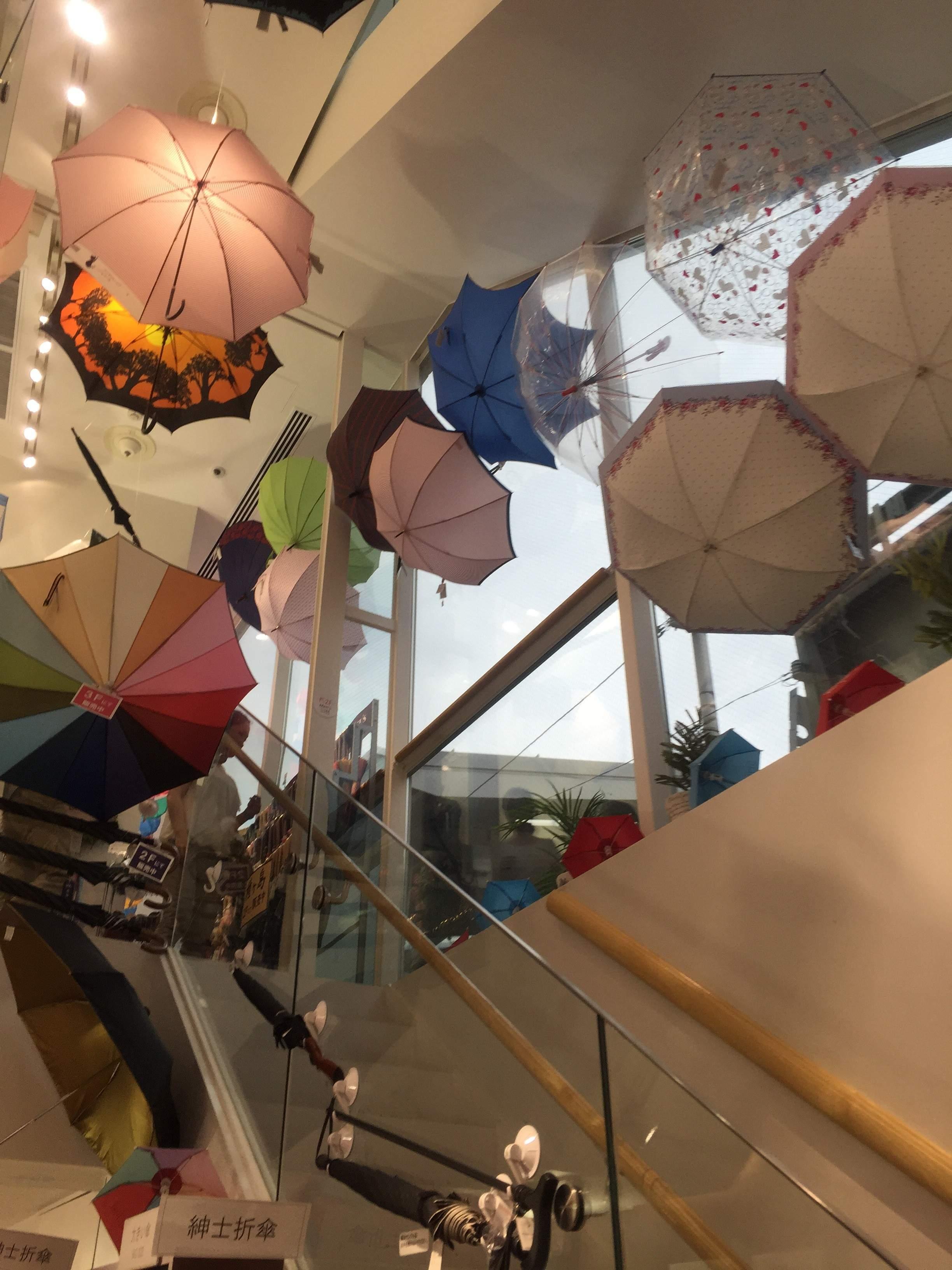 【その数10,000本!】傘専門店でお気に入りの傘を探そう!@自由が丘