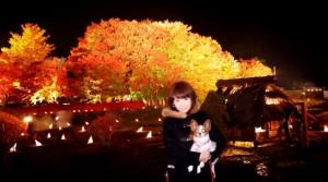 今が見ごろ!紅葉まつりin河口湖 ☆夜の紅葉にうっとり☆