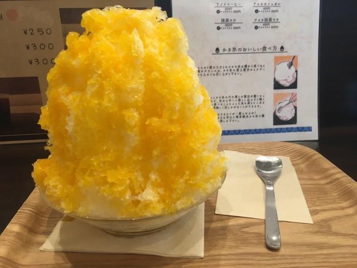 ふわふわ食感かき氷♡『おいしい氷屋』