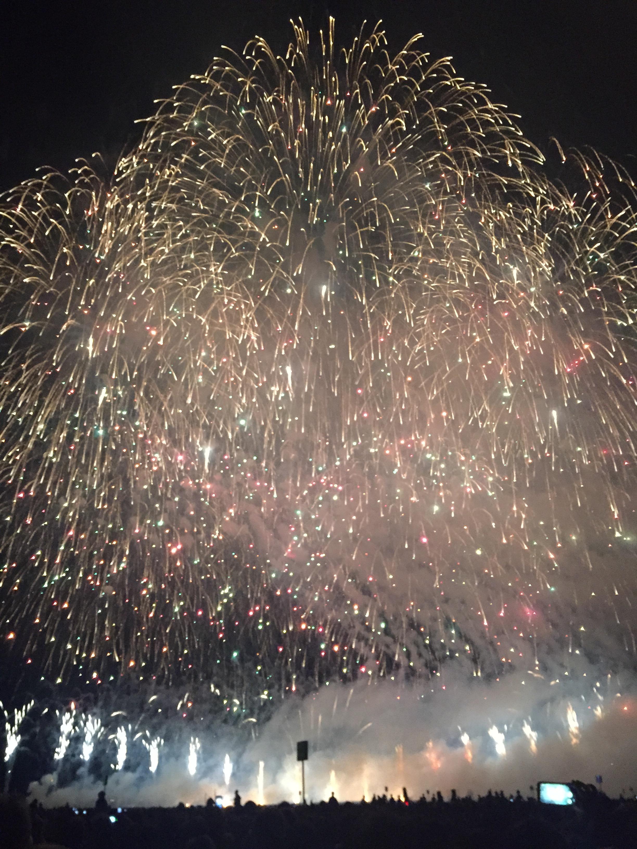 た~まや~♪日本三大花火の一つ、長岡花火大会