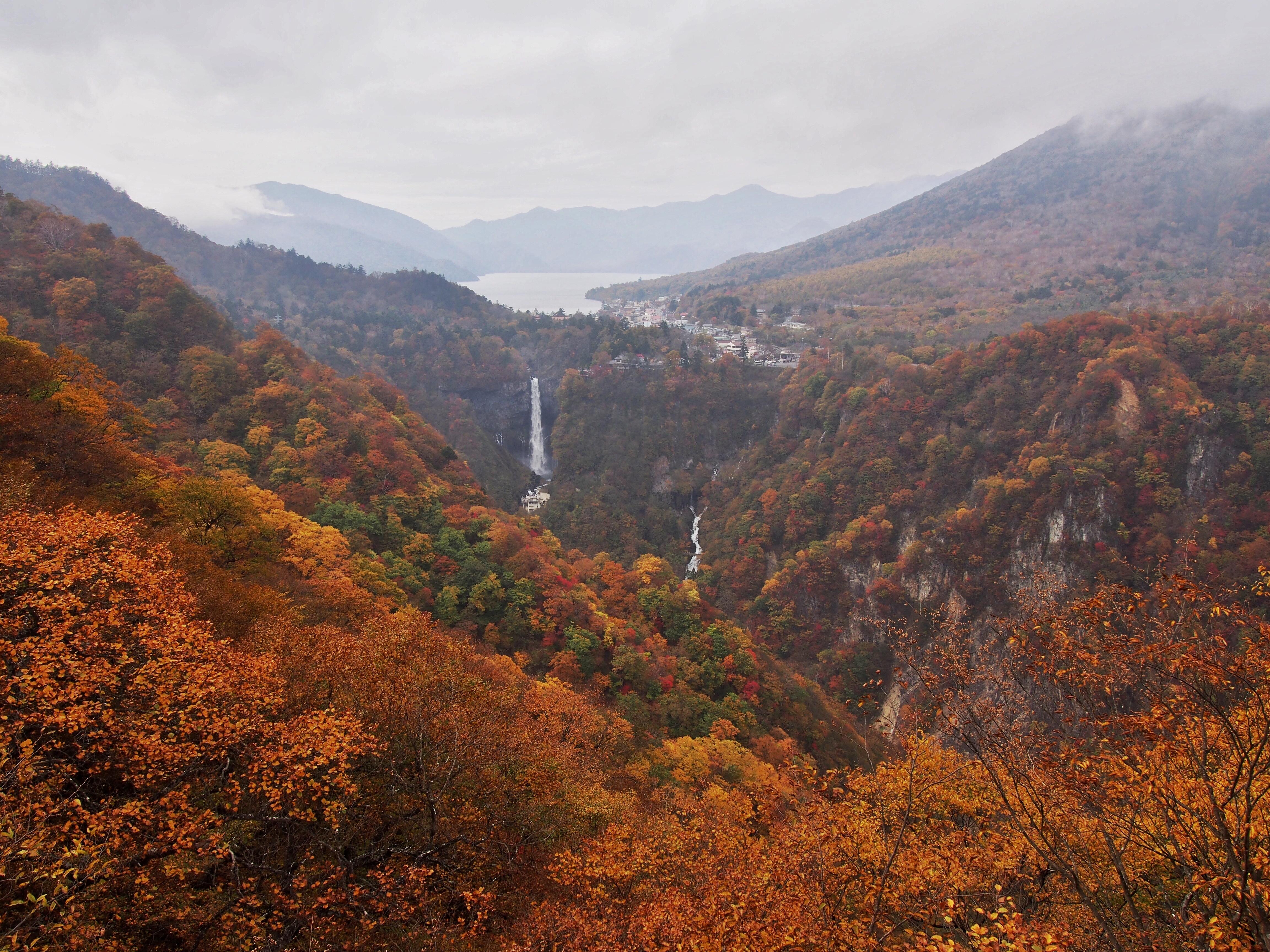 【日光】東照宮だけじゃない?!紅葉の日光、行くべき絶景観光スポット