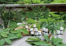 「自然の薬箱~五感をひらく、森の香りとストレスケア講演会~」ほか
