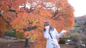 【愛の紅葉狩りレポ③】都心のど真ん中 新宿のオアシス「新宿御苑」の紅葉