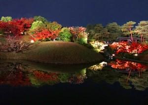 【紅葉】京都の穴場を発見!