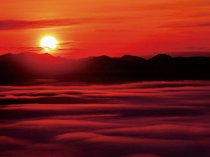 【vol.90】五感を刺激する季節の風物詩を求めて