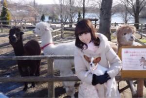 【栃木旅行②】那須で愛犬と遊べるスポット巡り♪ランキングで紹介!!