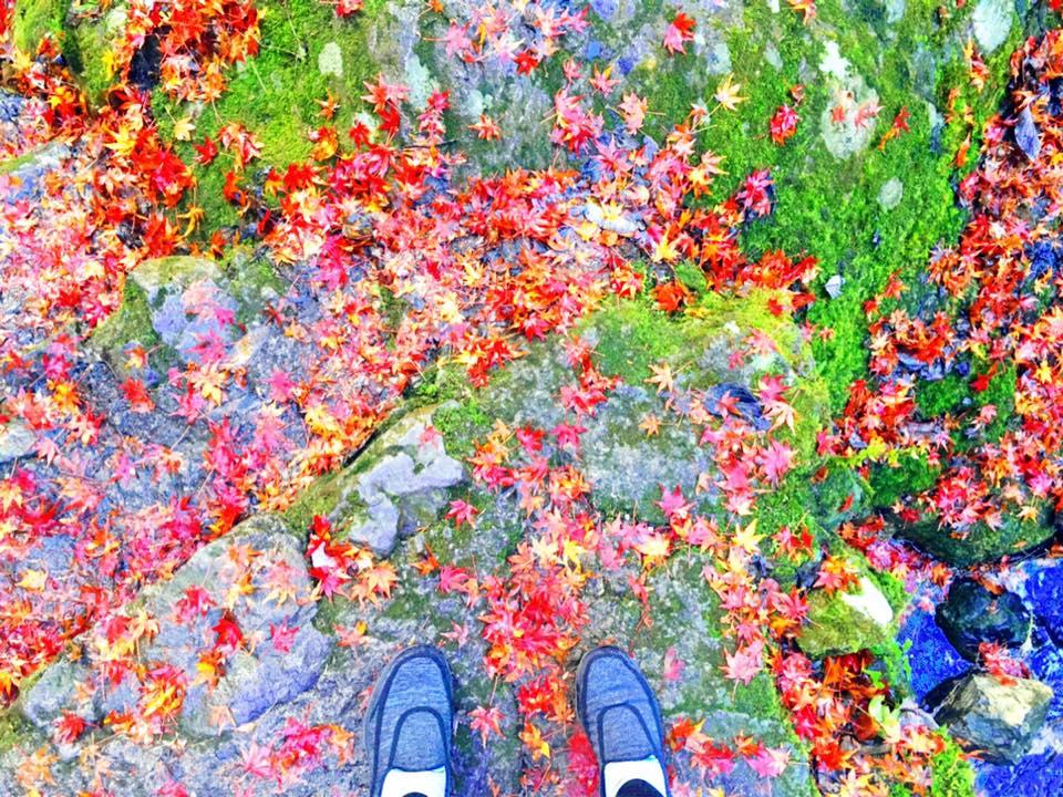 【パワースポットで運気アップ!】東京都檜原村へ行ってきました♪①