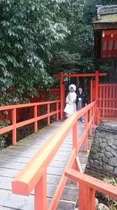 下鴨神社_161211_2