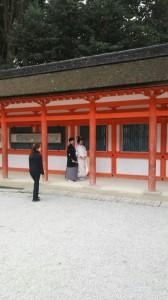 下鴨神社_161211_7777