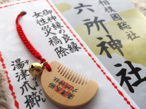 女性に強い御利益!相模國総社『六所神社』は2000年以上の歴史ある神社