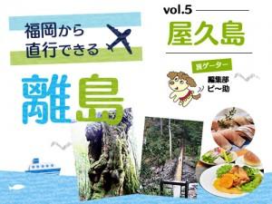 福岡から直行便で行ける離島第5弾「屋久島」。人に触れ、自然に身を置く、癒やしの旅。