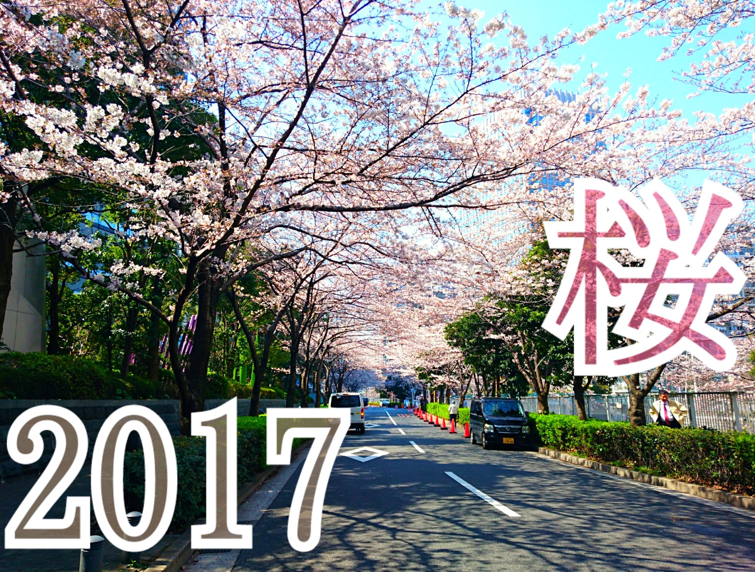 東京さくらだより♥品川なう(bySonokoちゃん)