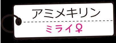 アミメキリン/ミライ♀