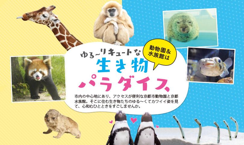 動物園&水族館は ゆるーりキュートな生き物パラダイス