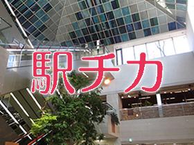横浜駅チカ便利スポット!そごう横浜店9階「市民フロア」を探検!シティ読者限定特典も