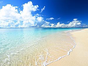 海とプールどっち派?
