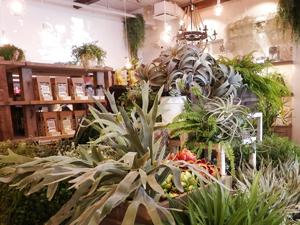 「BOTANIST」初の旗艦店が原宿表参道にオープン! 限定アイテムやカフェも♪