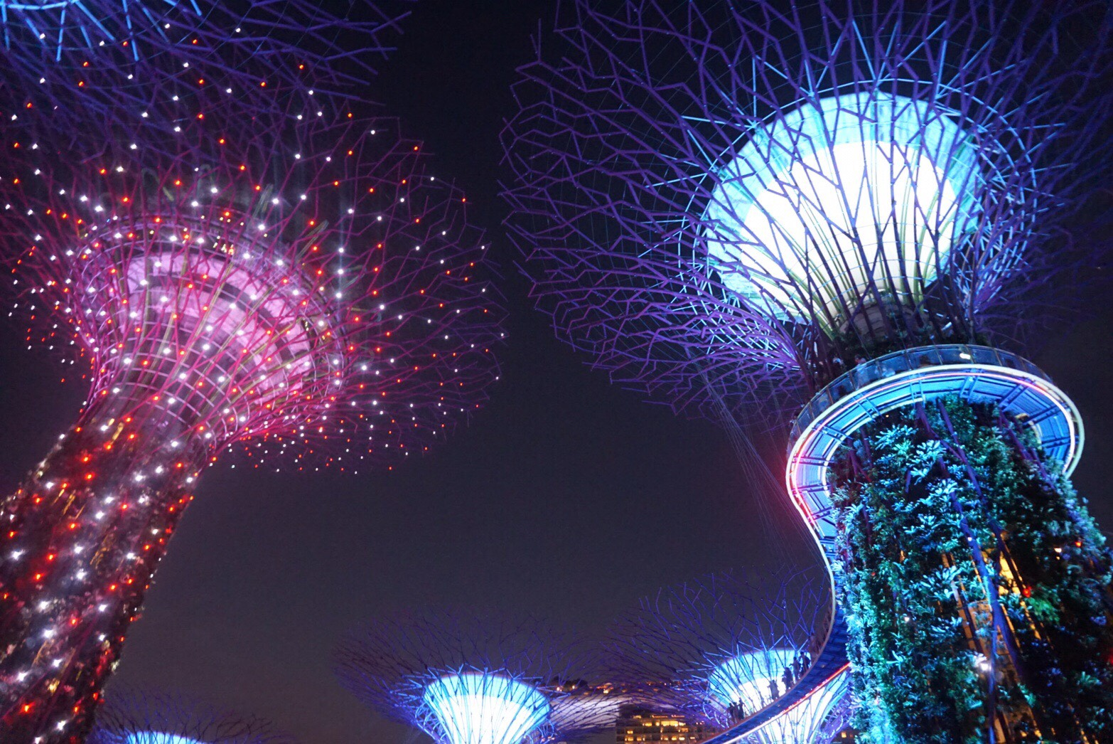 シンガポール♪光と植物の近未来を体験!