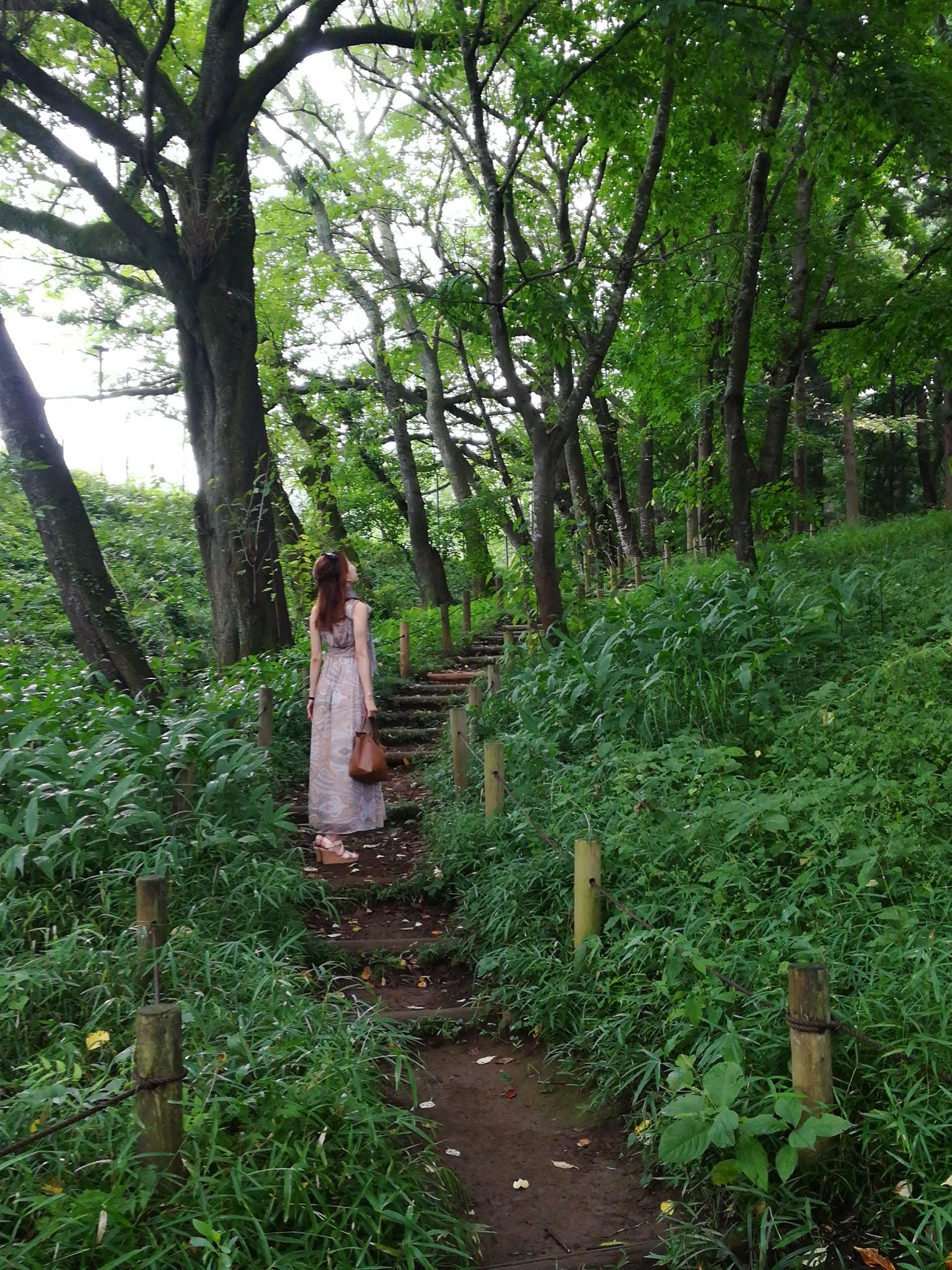 アートとキノコを求めて DIC川村美術館ときのこ園