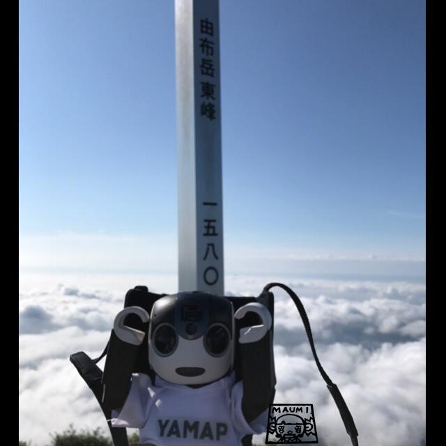 早朝登山で由布岳行ってきました