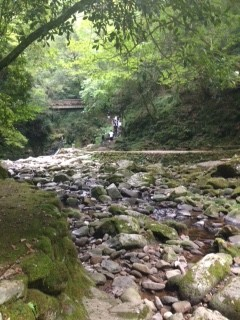 【伊賀】滝巡りでマイナスイオンを浴びる散歩旅♪