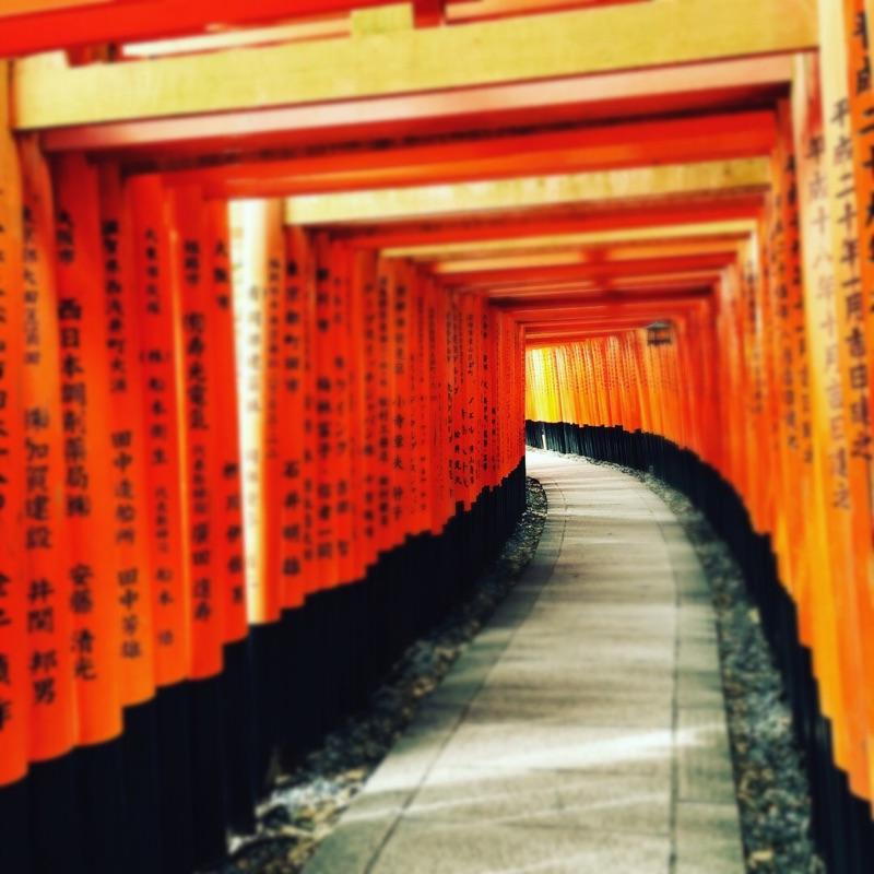 まもなく秋!定番の京都観光スポット・伏見稲荷大社をご案内
