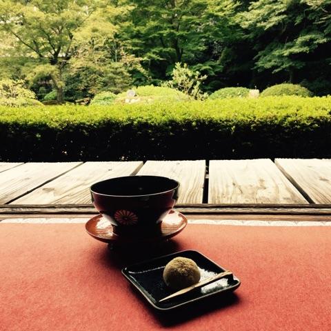京都観光★超オススメ紅葉スポット!泉涌寺塔頭・雲龍院