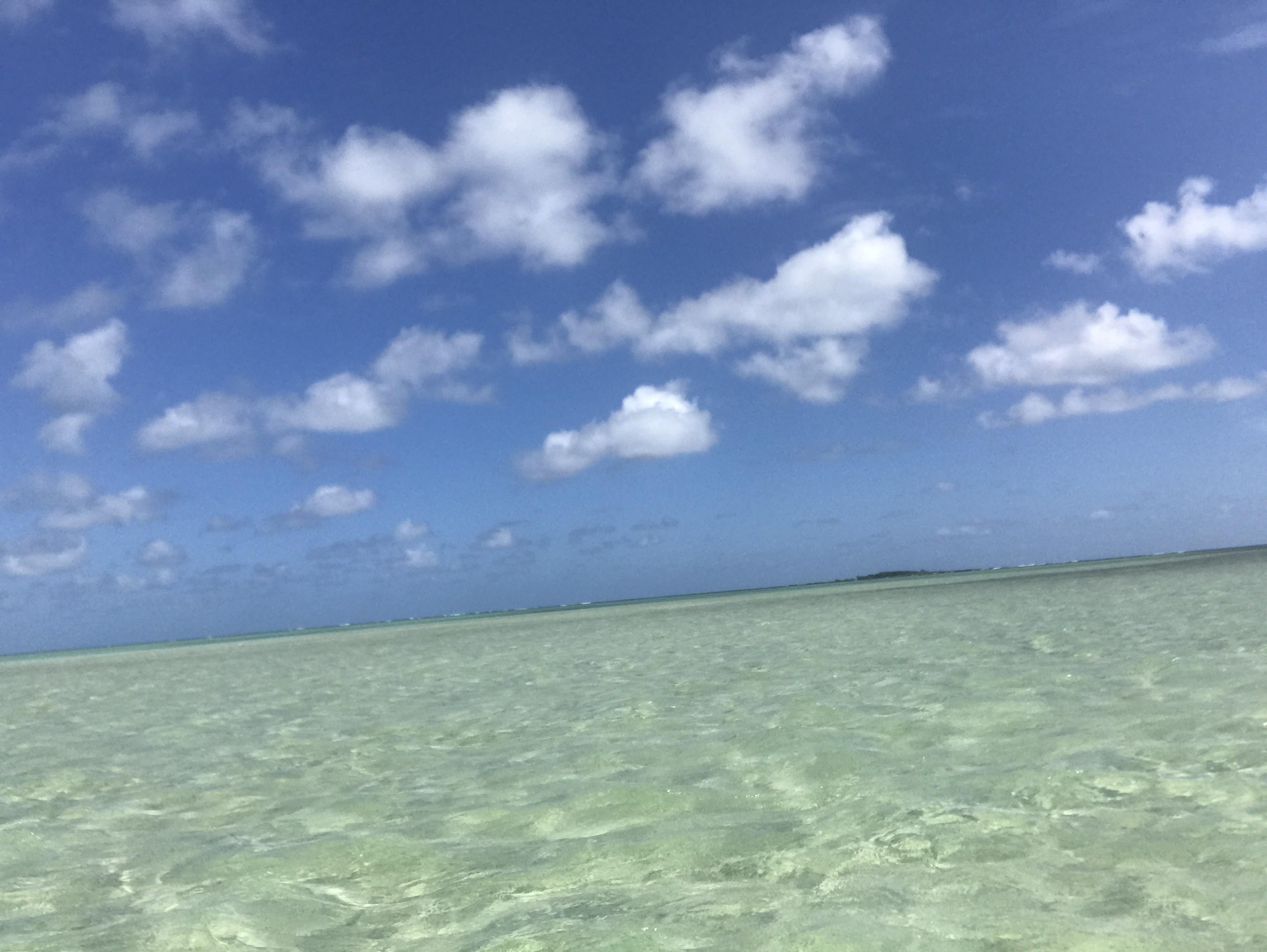ハワイへ逃避行♡天国の海サンドバー