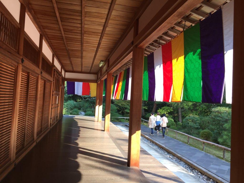 『京都秋の東山 三ヶ寺巡り』智積院編