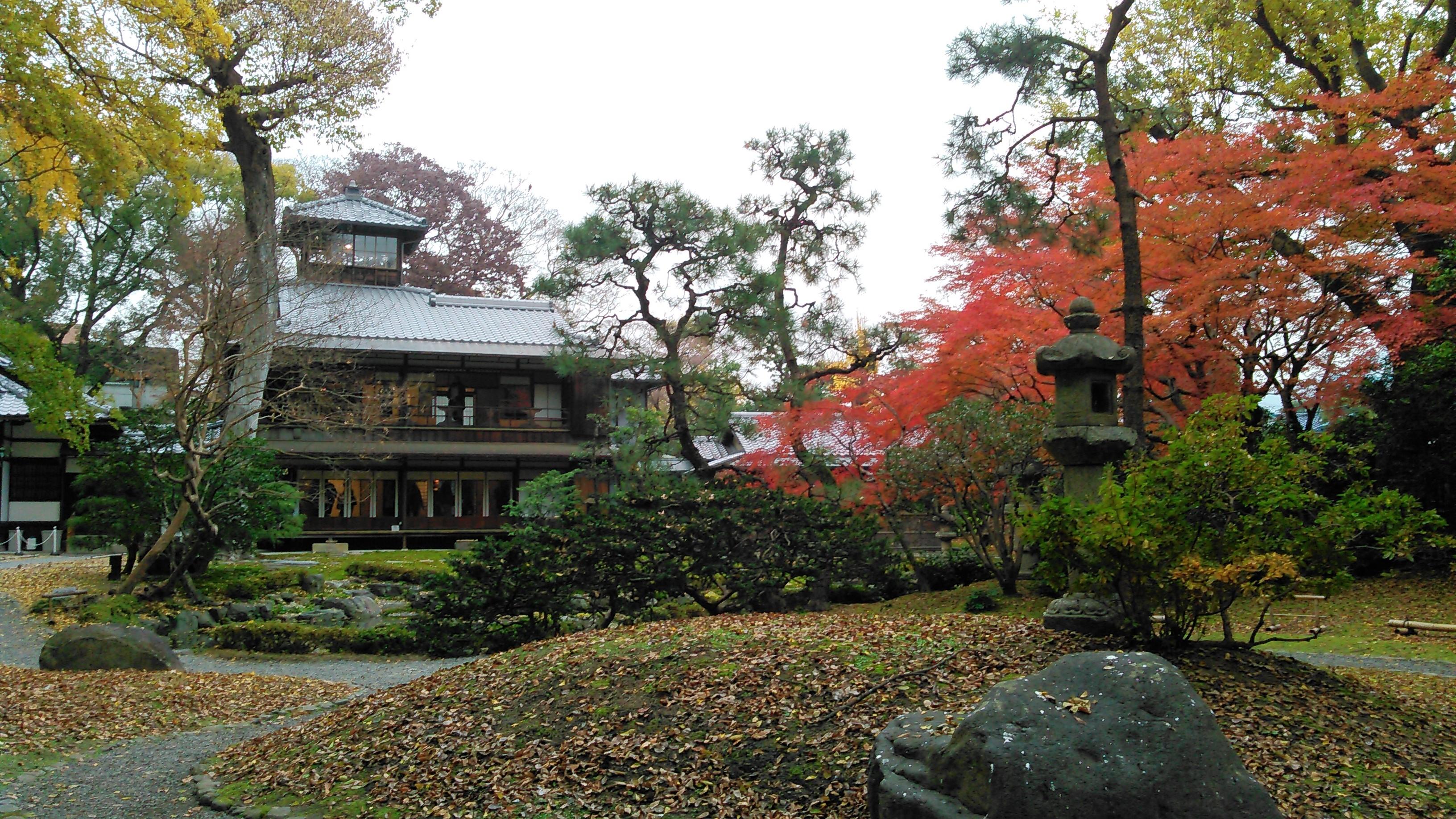 旧三井家下鴨別邸-京都の紅葉⭐