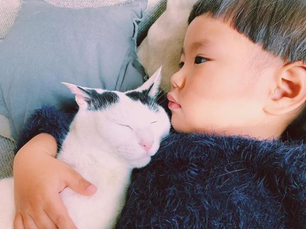 【いぬねこ うちのこ】たいくん(3歳)と猫のザクロ/もりもとりえ さん