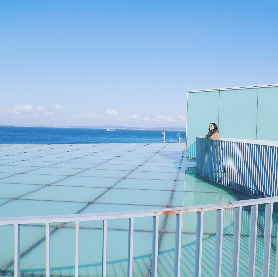 【横須賀】食の宝庫!絶対寄りたい農産物直売所とインスタ映えの絶景美術館