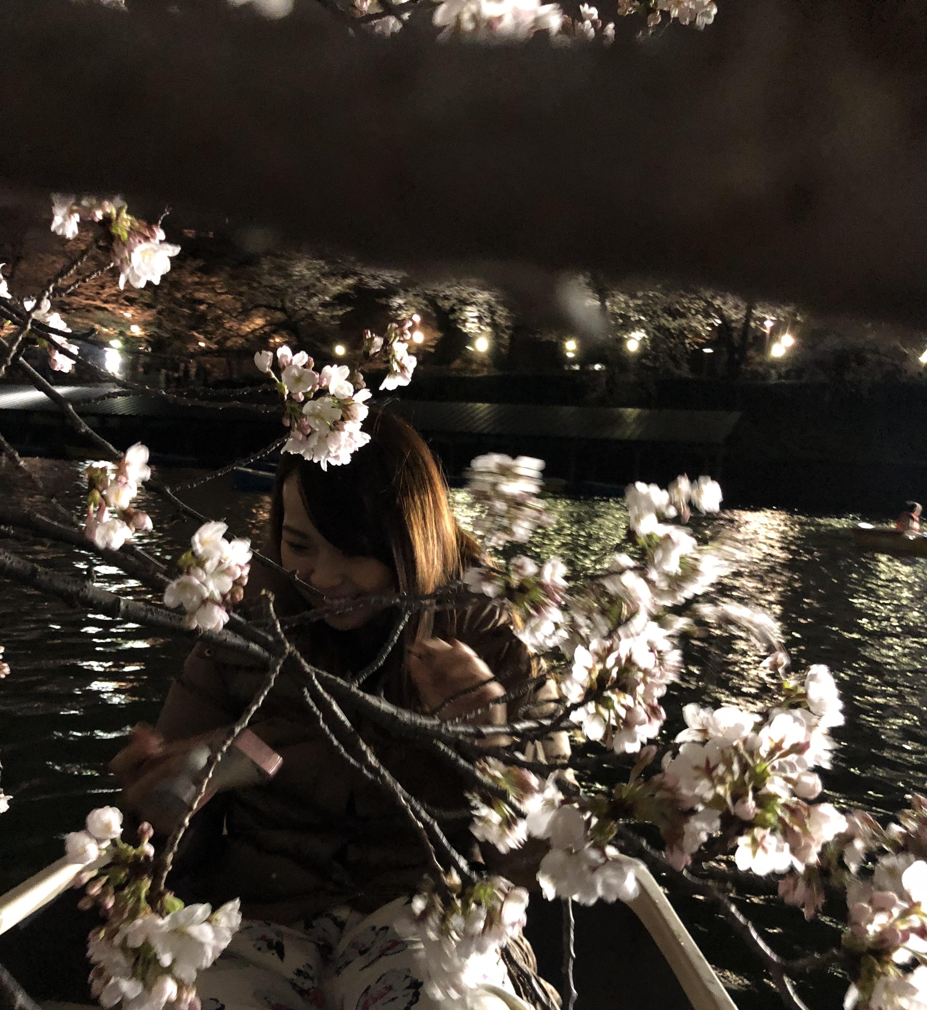都内の絶景オススメ桜お花見スポット!穴場!やライトアップも!
