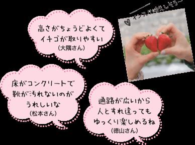 高さがちょうどよくてイチゴが取りやすい(大隅さん) 床がコンクリートで靴が汚れないのがうれしいな(松本さん) 通路が広いから人とすれ違ってもゆっくり楽しめるね(徳山さん)