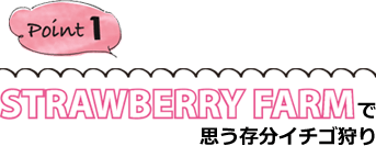 「STRAWBERRY FARM」で思う存分イチゴ狩り
