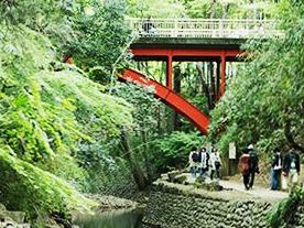 本当に東京!? 大自然と出会えるマル秘パワスポ「等々力渓谷」へプチ旅行
