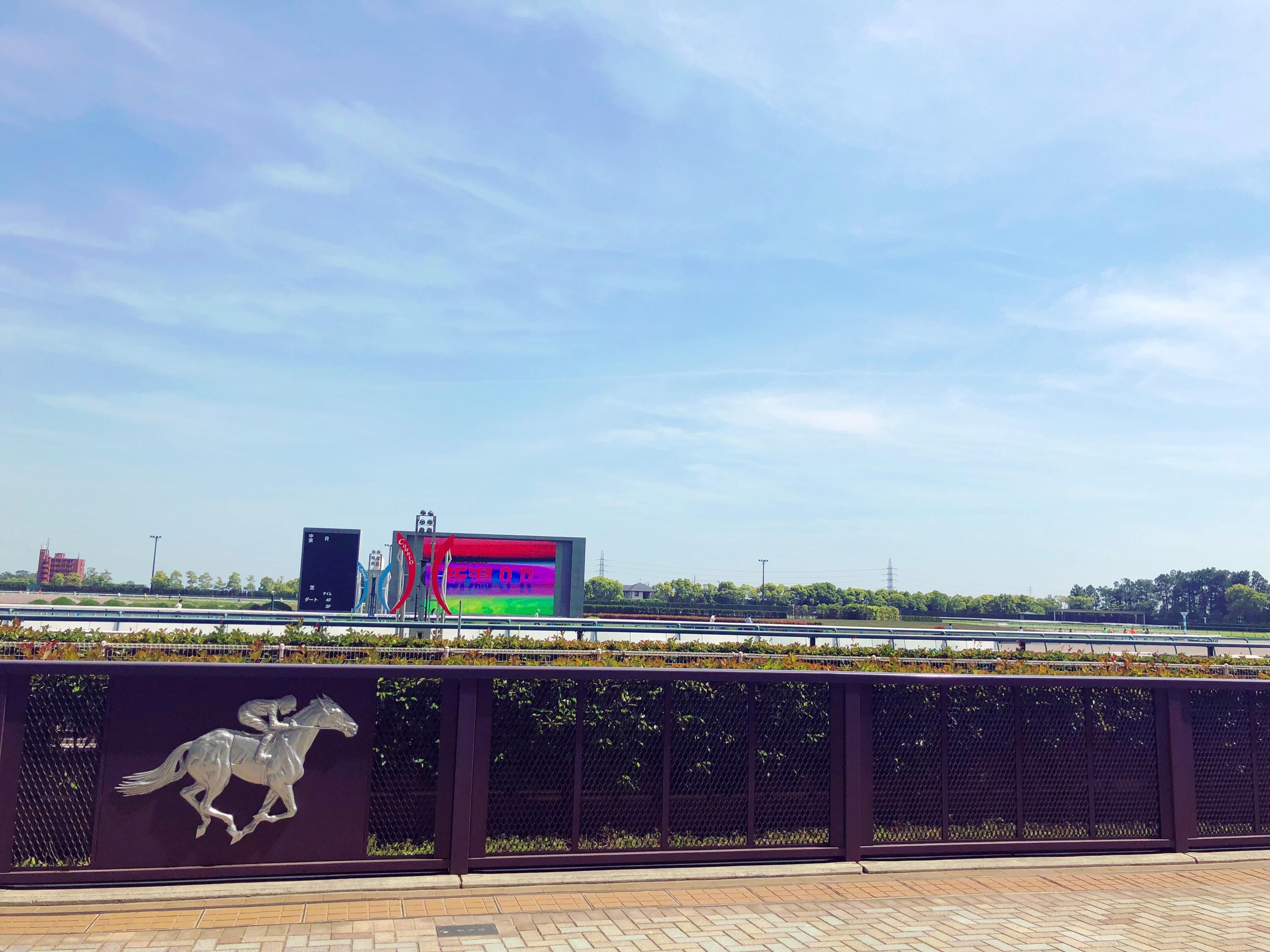 中京競馬場を走るリレーマラソン