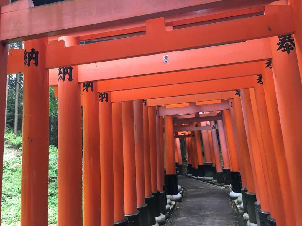 思い立ったので京都伏見の稲荷山のぼってみましたw