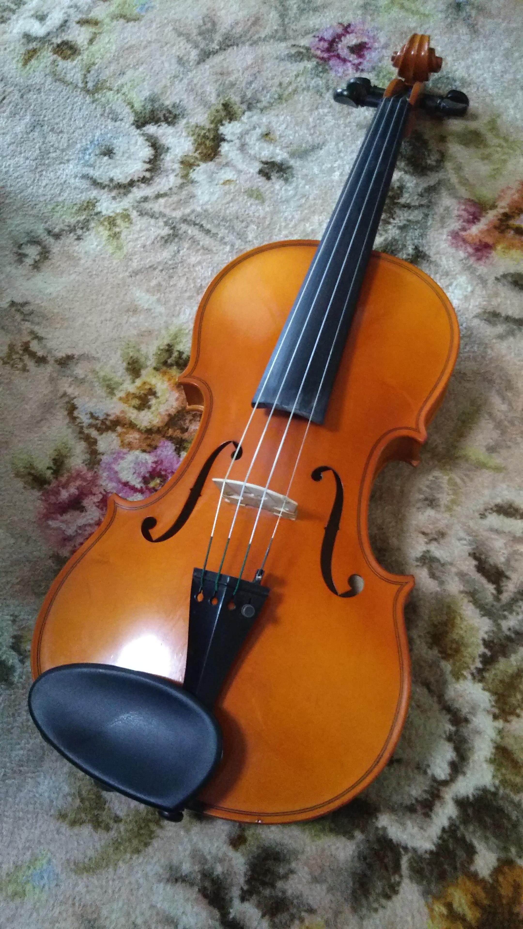 好きなことを始めよう♪‐バイオリン編‐