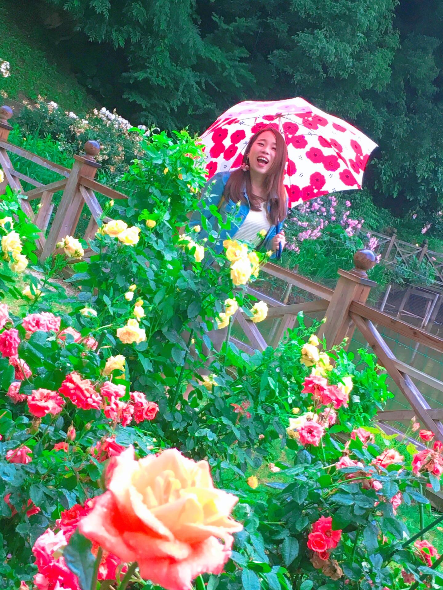 【福岡】イングリッシュガーデンに行ってきました【花】